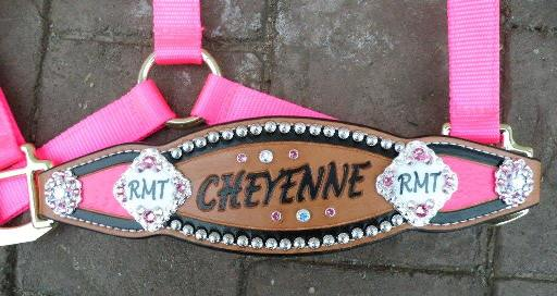 custom painted bronc halter pink