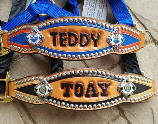 custom inlay bronc halters