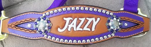 custom inlay bronc halters purple