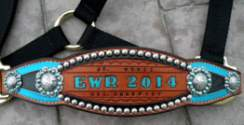 Stamped and Stained halters
