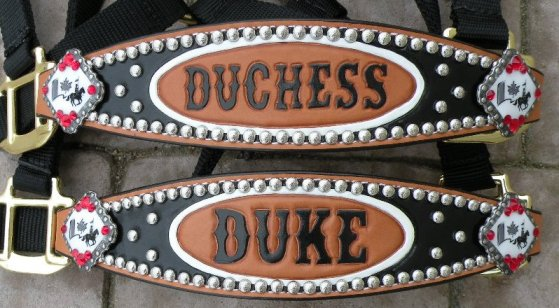 duke duchess