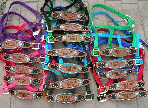 inlay halters colored group