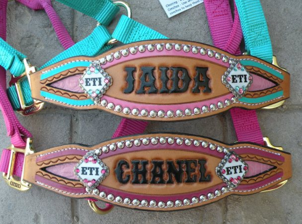 custom bronc halter inlay bling