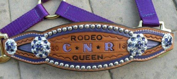 custom inlay purple bronc halter trophy