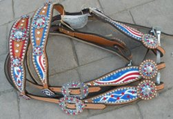 Custom Painted Award Tack