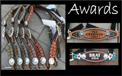 custom trophy horse tack awards