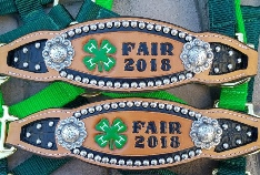 Inlay halters