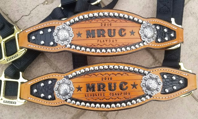 custom award stamped bronc halter